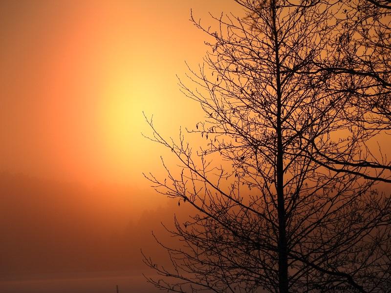 Kuva on otettu tämän vuoden tammikuun ensimmäisinä pakkaspäivän aamuna