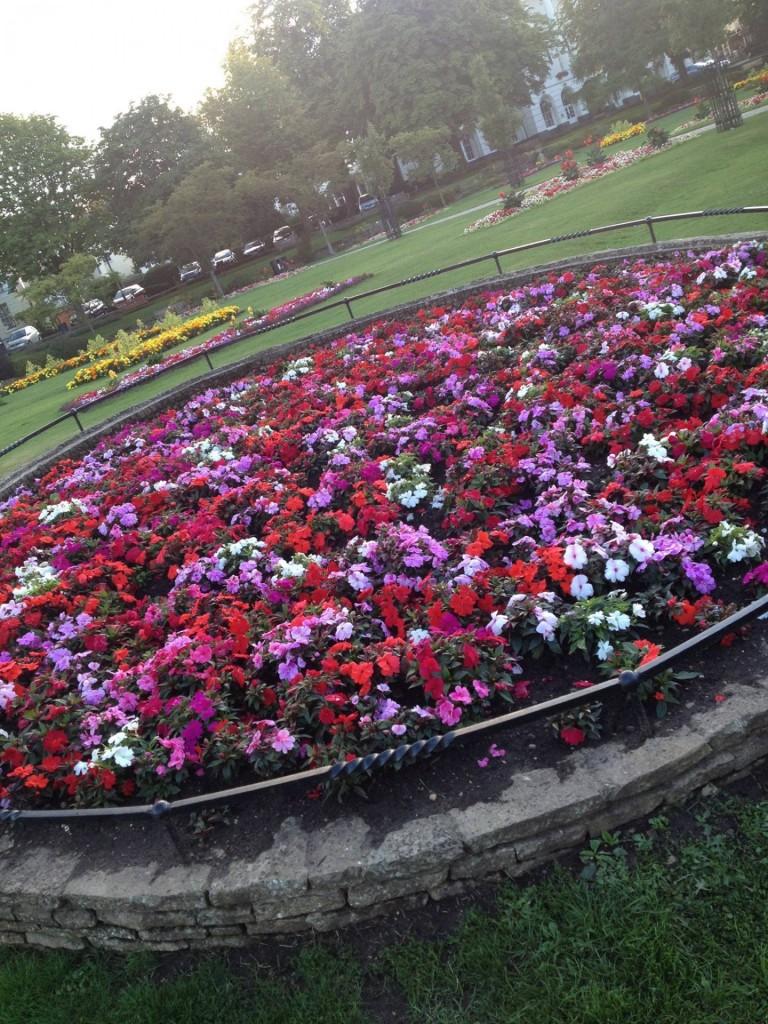 Suomityttöjen juttutuokio kauniissa puistossa