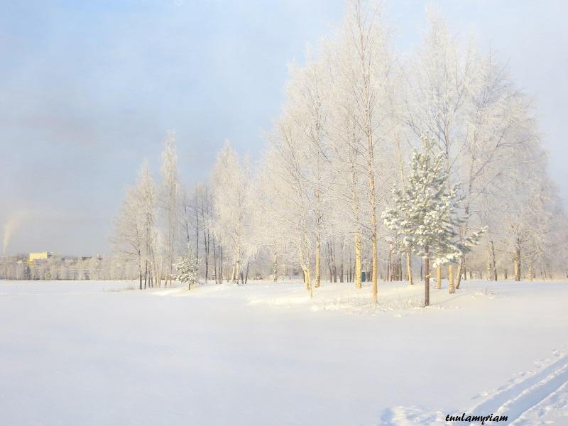 talven hennot sävyt