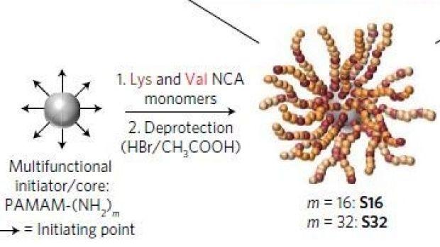 superpolypeptidi